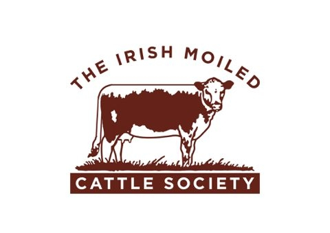 Irish Moiled Cattle Society